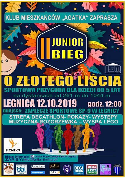 e-legnickie pl - Legnica